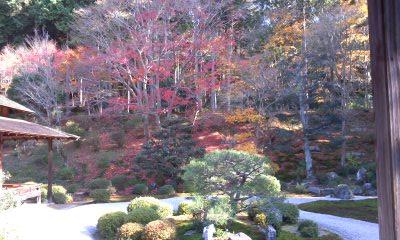 京都曼朱院.jpg